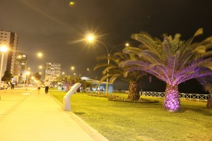 Malecon-Bertolotto-01